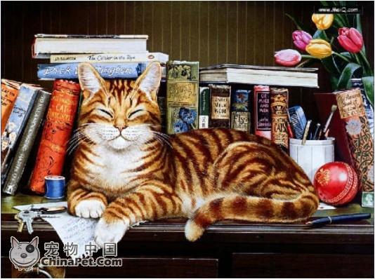 精美的手绘猫图片