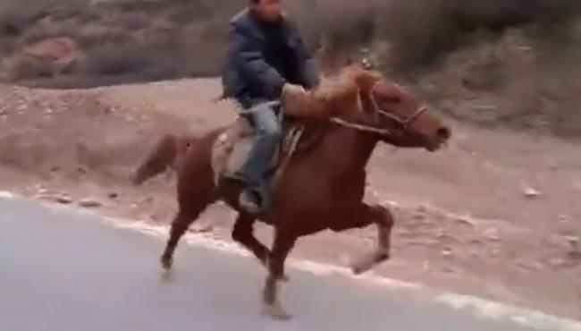听说这叫走马,是说看着有点别扭、印象里马儿跑起来都是咯咯哒、咯咯哒