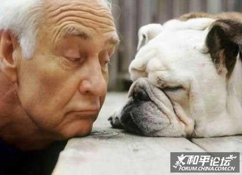 有趣动物的睡相
